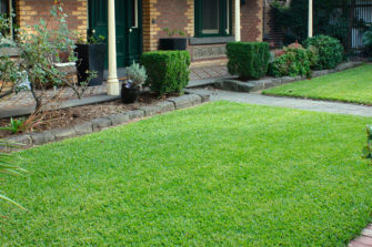 9 Tips on How To Choose The Right Grass For Your Lawn