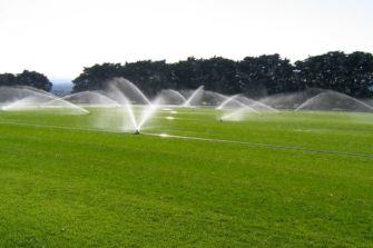 Waterwise Lawns
