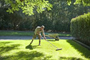 Topdressing Lawns