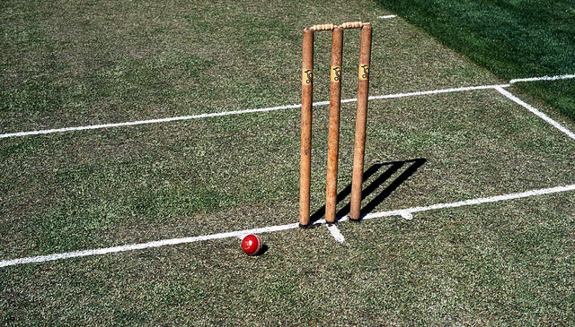 Cricket Pitch Repair Guide