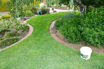 How and When to Lay Instant Turf in Australia: A Step by Step Guide