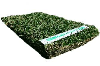 Which Turf Should I Buy in Winter?