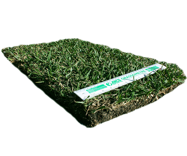 Private: Turf Tablet