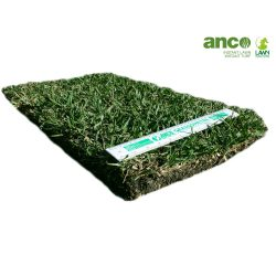 Turf Tablet - Anco Turf