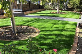 6 Lawn Tips for SPRING