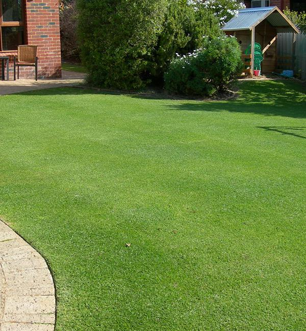 Types of Lawn Fertilizer