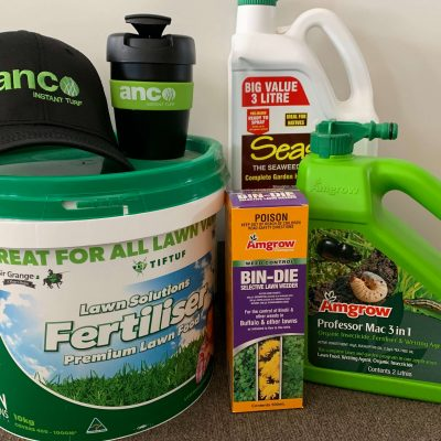 Anco Turf Spring Special - Instant Turf Melbourne