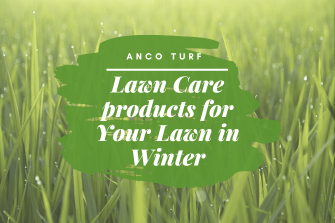 Top 12 Lawn Care Products for Your Lawn in Winter