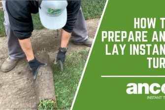How to prepare and lay Instant Turf?