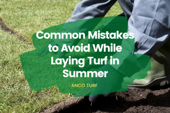 5 Common Mistakes to Avoid While Laying Turf in Summer