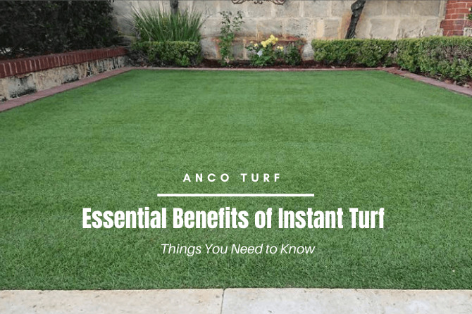 essential benefits of instant turf