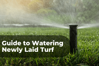 Ultimate Guide to Watering Newly Laid Turf
